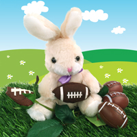 Football Rose & Bunny gift set THUMBNAIL