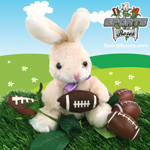Football Rose & Bunny Gift Set MAIN
