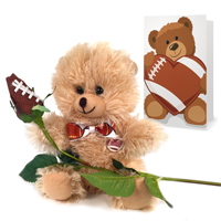 Football rose teddy bear gift set THUMBNAIL
