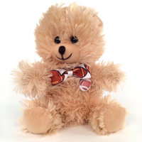 Sports Teddy Bear_THUMBNAIL
