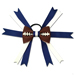 Football Hair Bow - Indianapolis SWATCH