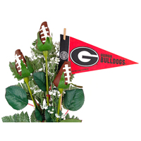 Georgia Bulldogs Gifts and Accessories