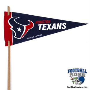 Houston Texans Mini Felt Pennants_MAIN