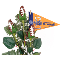 Illinois Fighting Illini Gifts and Accessories