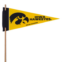Iowa Hawkeyes Mini Felt Pennants THUMBNAIL