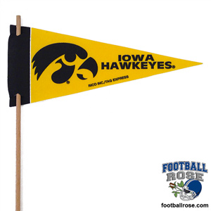 Iowa Hawkeyes Mini Felt Pennants MAIN