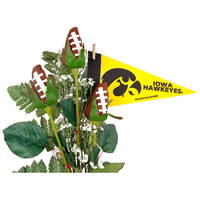Iowa Hawkeyes Gifts and Accessories