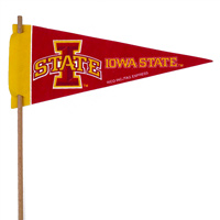 Iowa State Cyclones Mini Felt Pennants THUMBNAIL
