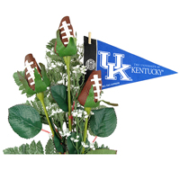 Kentucky Wildcats Gifts and Accessories