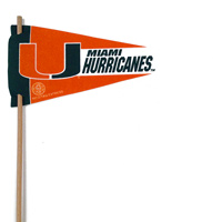 Miami Hurricanes Mini Felt Pennants THUMBNAIL