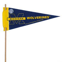 Michigan Wolverines Mini Felt Pennants THUMBNAIL