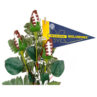 Michigan Wolverines Gifts and Accessories