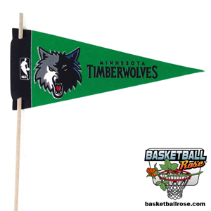 Minnesota Timberwolves Mini Felt Pennant MAIN