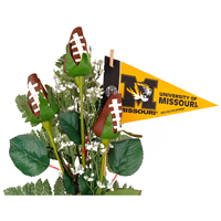 Mizzou Tigers Gifts and Accessories