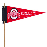 Ohio Buckeyes Mini Felt Pennants THUMBNAIL