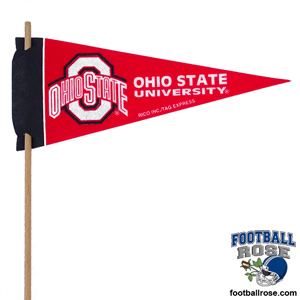 Ohio Buckeyes Mini Felt Pennants MAIN
