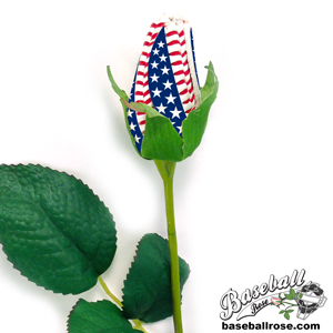 Star-Spangled Baseball Rose MAIN