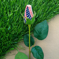 Star-Spangled Baseball Rose Patriotic Floral Arrangements THUMBNAIL