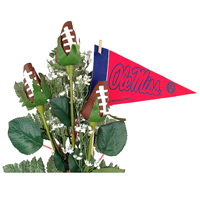Ole Miss Rebels Gifts and Accessories
