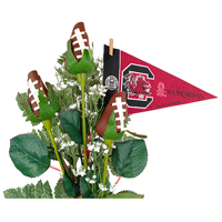 South Carolina Gamecocks Gifts and Accessories