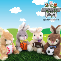 Baseball Basketball Football Soccer Bunny_THUMBNAIL