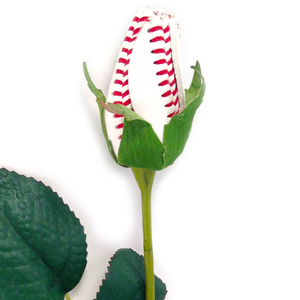 Baseball Rose MAIN
