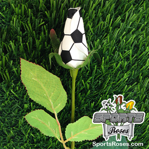 Soccer Rose -- Display Option: Standard