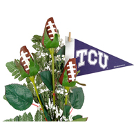 TCU Horned Frogs Gifts and Accessories