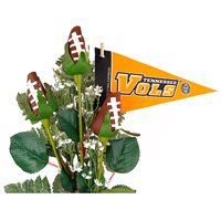 Tennessee Volunteers Gifts and Accessories