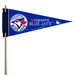 MLB Mini Felt Pennants SWATCH