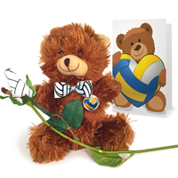 Volleyball rose teddy bear gift set THUMBNAIL