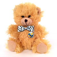 Sports Teddy Bear THUMBNAIL