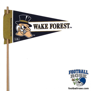 Wake Forest Demon Deacons Mini Felt Pennants MAIN