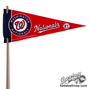 Washington Nationals Mini Felt Pennants MAIN