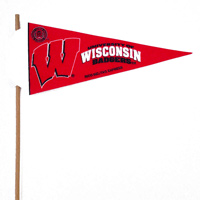 Wisconsin Badgers Mini Felt Pennants THUMBNAIL