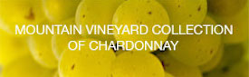 MOUNTAIN VINEYARD CHARDONNAY