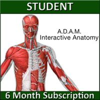 A.D.A.M. Interactive Anatomy Online - Student Version (6 Month Sub) LARGE