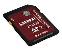 Kingston Class 3 Professional Extended Capacity SDXC Card 256GB
