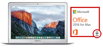 "Apple MacBook Air 13"" 1.3GHz/4GB/128GB (Mid 2013) w/Office Bundle (Grade B Refurbished)"