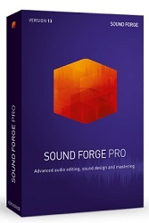 MAGIX Creative Software Sound Forge Pro 13 (Download) LARGE