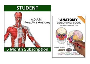 A.D.A.M. Interactive Anatomy Online – 6 Month Student Edition with ...