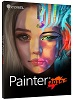 Corel Painter 2019 (DVD)