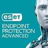ESET Endpoint Protection Advanced 1-Year Subscription (Download) THUMBNAIL