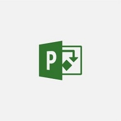 Microsoft Project 2019 Standard (Download) LARGE