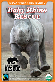 save-the-rhinos THUMBNAIL