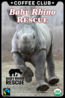Baby Rhino Rescue Coffee Club THUMBNAIL