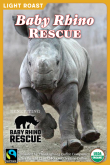 Baby Rhino Rescue - Light Roast_THUMBNAIL