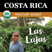 Thanksgiving Costa Rican Coffee - medium roast, organic, single origin, honey processed THUMBNAIL