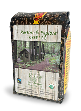 Restore & Explore - Light Roast