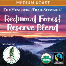 Redwood Forest Reserve Blend - medium roast, Fair Trade, organic blend THUMBNAIL
